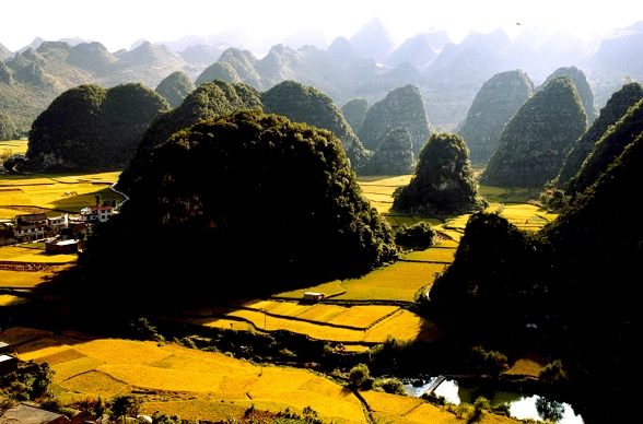 Karstlandschaft in China: Xingyi Wangfenglin